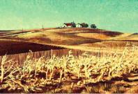 Fall Corn (1969)